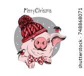 christmas card. portrait of the ... | Shutterstock .eps vector #748868071