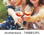 two glasses of wine  wich hold... | Shutterstock . vector #748881391