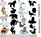 northern animals set to find... | Shutterstock .eps vector #748893919