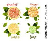 vector mixed citrus set with... | Shutterstock .eps vector #748913425