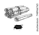 cinnamon stick tied bunch... | Shutterstock . vector #748966765