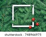 creative background of pine... | Shutterstock . vector #748966975