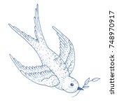 swift bird vector hand drawn...   Shutterstock .eps vector #748970917