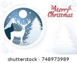 merry christmas vector graphics ... | Shutterstock .eps vector #748973989