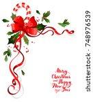 christmas festive ornament for... | Shutterstock .eps vector #748976539