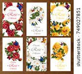 celebration postcard set with... | Shutterstock .eps vector #749027851