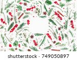 christmas composition. frame... | Shutterstock . vector #749050897