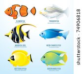Tropical Reef Fish Collection ...