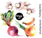 watercolor vegetables set....   Shutterstock . vector #749082991