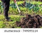 gardener working in the...