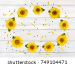 flowers sunflower  helianthus... | Shutterstock . vector #749104471