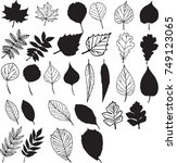 leaves vector set isolated from ... | Shutterstock .eps vector #749123065