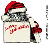 christmas kitten in santa... | Shutterstock .eps vector #749161501
