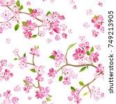 blooming spring flowers pattern ... | Shutterstock .eps vector #749213905