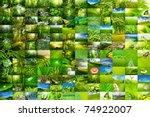 nature wallpaper background ... | Shutterstock . vector #74922007