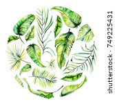 watercolor tropical palm leaves ... | Shutterstock . vector #749225431