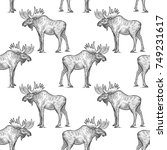 elk or moose. seamless pattern... | Shutterstock .eps vector #749231617