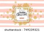 elegant merry christmas... | Shutterstock .eps vector #749239321