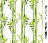 seamless vector texture with... | Shutterstock .eps vector #749240407