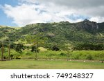 lush  green  tropical... | Shutterstock . vector #749248327