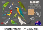 parrot breeds icon set flat... | Shutterstock .eps vector #749332501