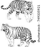 set of vector drawings on the... | Shutterstock .eps vector #749335921