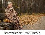 grandmother in plaid | Shutterstock . vector #749340925