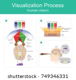 visualization process is the... | Shutterstock .eps vector #749346331