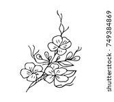 flower illustration. doodle... | Shutterstock . vector #749384869