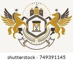 heraldic coat of arms... | Shutterstock .eps vector #749391145