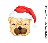 dog with a christmas hat ... | Shutterstock . vector #749395831