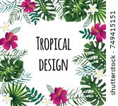 square tropical frame  template ... | Shutterstock . vector #749415151