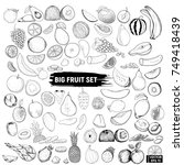 big set of fruits  doodle. | Shutterstock .eps vector #749418439