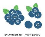 blueberry logo    Shutterstock .eps vector #749418499