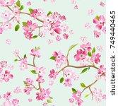 blooming spring flowers pattern ... | Shutterstock .eps vector #749440465