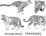 set of vector drawings on the... | Shutterstock .eps vector #749453401