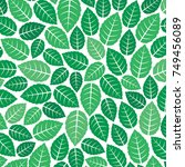 background pattern with fresh... | Shutterstock .eps vector #749456089