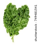 Kale Leaves Isolated On White
