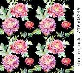 wildflower chrysanthemum flower ... | Shutterstock . vector #749506249