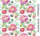 wildflower chrysanthemum flower ... | Shutterstock . vector #749506321