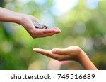 money on hand  philanthropy...   Shutterstock . vector #749516689