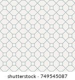 vector seamless pattern and... | Shutterstock .eps vector #749545087