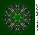 snowflakes radial green  gray... | Shutterstock .eps vector #749585035