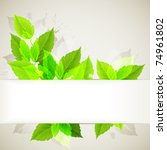 branch with fresh green leaves | Shutterstock .eps vector #74961802
