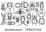 set of insects. vector black... | Shutterstock .eps vector #749637424