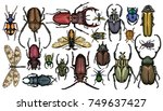 set of colored insects. vector... | Shutterstock .eps vector #749637427