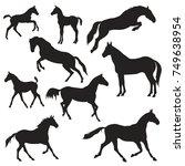 vector silhouette of horses on...   Shutterstock .eps vector #749638954