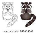 racoon cartoon including sketch | Shutterstock .eps vector #749665861