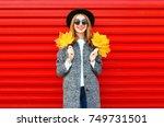 fashion autumn smiling woman... | Shutterstock . vector #749731501