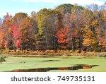 Autumn At Spooner Island Park...